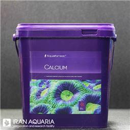 کلسیم (calcium)