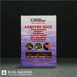 لابستر اگز (lobstereggs)
