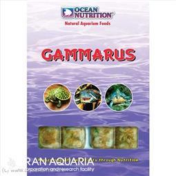 گاماروس (Gammarus)