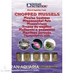 صدف ماسل خرد (chopped mussels)