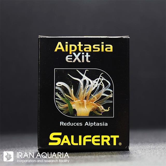 آیپتازیا اگزیت (Aiptasia Exit)