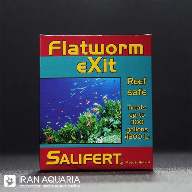 فلت ورم اگزیت (Flatworm Exit)