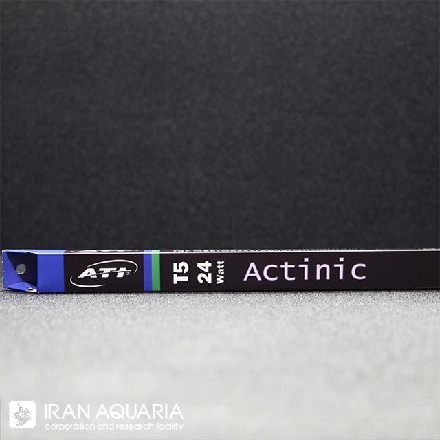 آکتینیک (actinic)