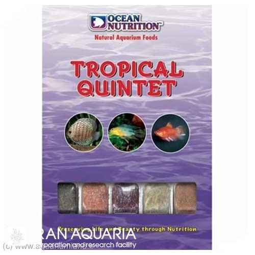 تروپیکال کوئینتت (Tropical Quintet)