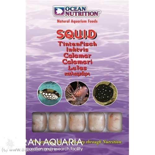 اسکوئيد (Squid)