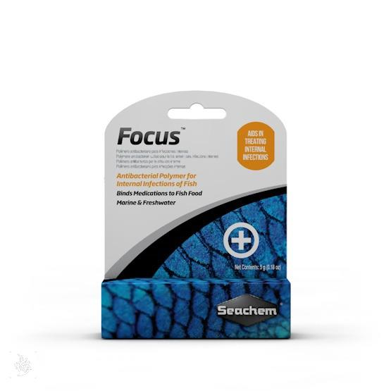 فکوس (focus)