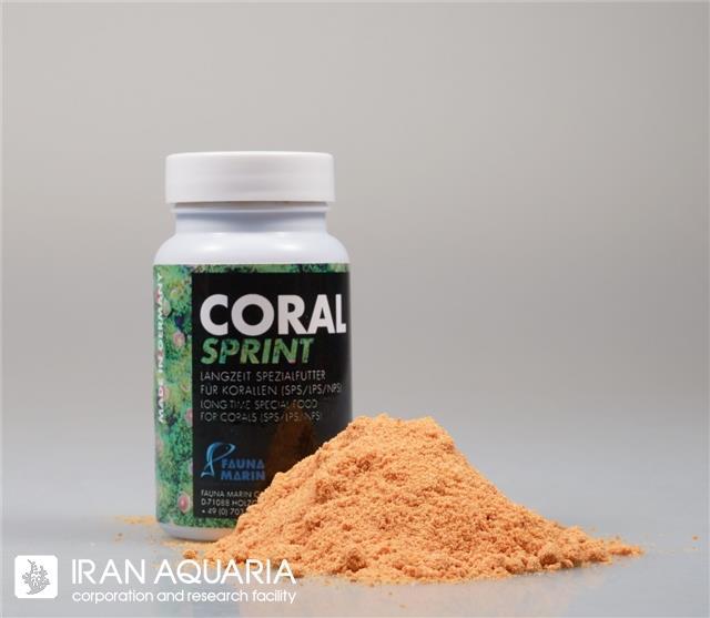 کورال اسپرینت (coral sprint)