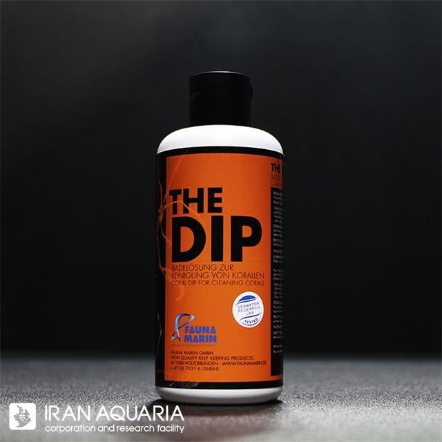 دیپ (The Dip)