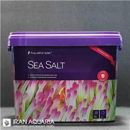 سی سالت (sea salt)