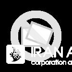 فرشته ماهی مجستیک ( blue girdled angelfish ) سایز L