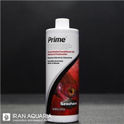 پرایم (prime)