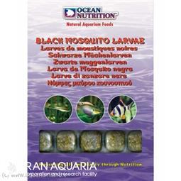 لارو پشه سیاه (black mosquito larvae)